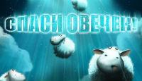 Спаси овечек!