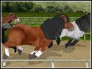 Скриншот Мой Пони