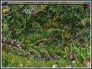 Скриншот Опасный круиз